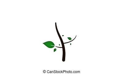 felnövés, élénkség, fa