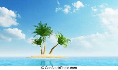 felnövés, pálma fa