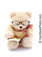 felolvasás, hord, teddy-mackó