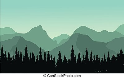 fenyő, körvonal, erdő, bitófák, éjszaka