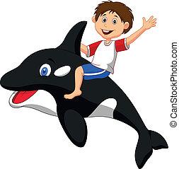 fiú, karikatúra, lovaglás, orca