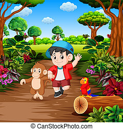 fiú, majom, rainforest