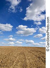 field., megbuktatott