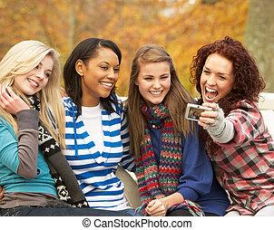 film, tizenéves, csoport, ülés, lány, bevétel, pad, négy, ősz, fényképezőgép