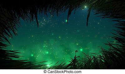 fireflies, fű, bukfenc, éjszaka