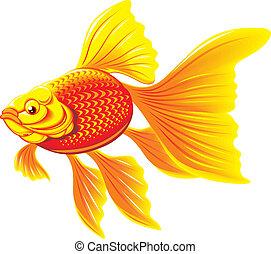 fish, arany-