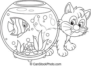 fish, cica, játék