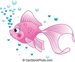 fish, csinos