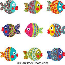 fish, grafikus, gyűjtés, színes, karikatúra