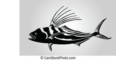 fish., kakas