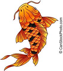 fish, koi, fehér, karikatúra, háttér, úszás