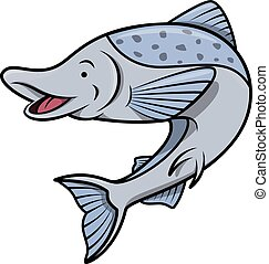 fish, lazac