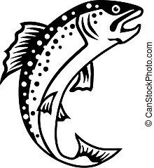 fish, pisztráng