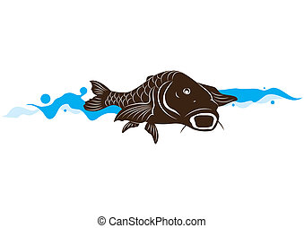 fish, ponty, vektor, ábra