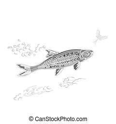 fish, szüret, ephemera