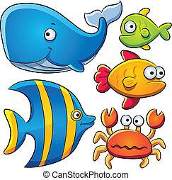 fish, tenger, gyűjtés