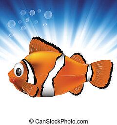 fish, tenger