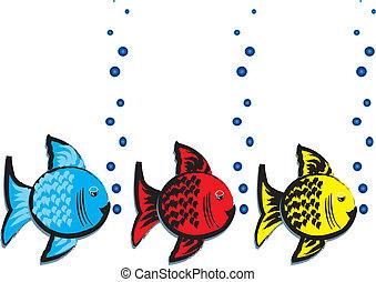 fish, tervezés, panama