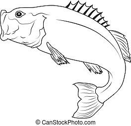 fish, ugrás