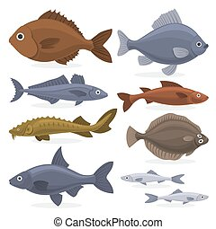 fish, vízi, fauna, gyűjtés, set.