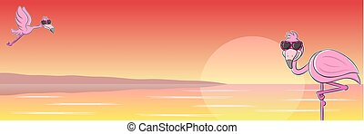 flamingó, napszemüveg, karikatúra