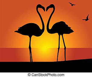 flamingo., csókol