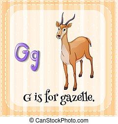 flashcard, levél g, gazella