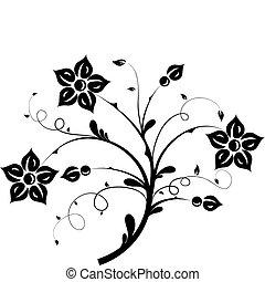 floral elem, tervezés, vektor