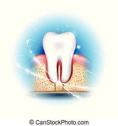 fogászati health, törődik