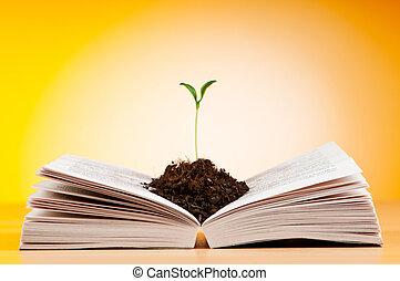 fogalom, előjegyez, tudás, seedlings