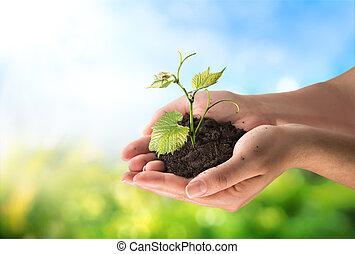 fogalom, mezőgazdaság, kevés, berendezés