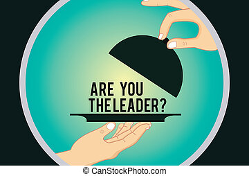 fogalom, szín, szöveg, felszolgálás, circle., fedő, írás, ön, ügy, leaderquestion., társaság, hu, vezetés, bemutat, kézbesít, emelés, törődik, szó, bevétel, analízis, tál, tálca, belső