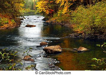folyó, erdő, bukás