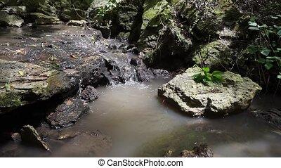 folyó, erdő, vízesés, futás, mohás, zöld, rocks., kicsi, nyár, folyik, erdőség, felett