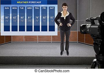 forecaster, időjárás