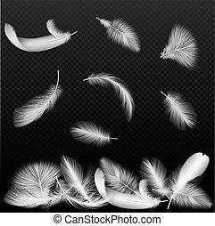 forgott, háttér., vektor, gyakorlatias, fekete, áttetsző, fehér, esés, horgol, madár, alfa