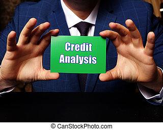 frázis, kártya kezezés, analízis, zöld, vadászik., hitel, ügy, horizontális, tiszta