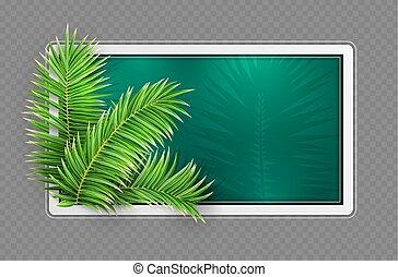 frame., zöld, leaves., layout., tropikus, tervezés, vector., pálma, transzparens