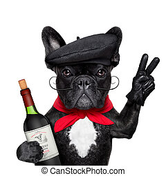 francia, kutya