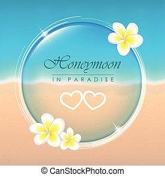 frangipani, nászút, tropical paradicsom, menstruáció, tengerpart