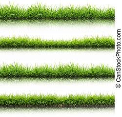 friss, fű, elszigetelt, zöld, eredet