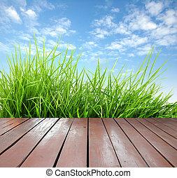 friss, fű, fából való, zöld, eredet, terasz