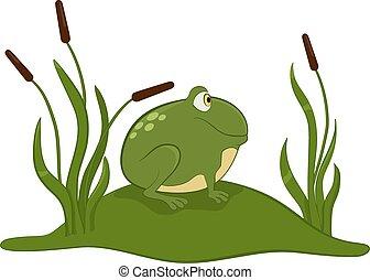 frog., zöld