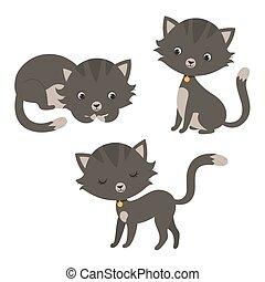 furcsa, állhatatos, karikatúra, cats.
