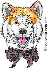 furcsa, inu, kutya, akita, vektor, csípőre szabott, karikatúra