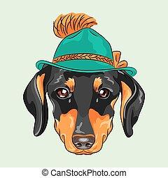 furcsa, kutya, karikatúra, vektor, csípőre szabott, tacskó