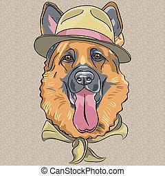 furcsa, pásztor, német, kutya, vektor, csípőre szabott, karikatúra