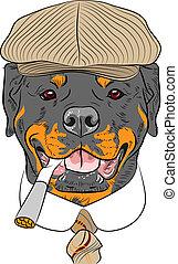 furcsa, rottweiler, kutya, vektor, csípőre szabott, karikatúra