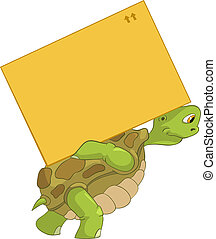 furcsa, turtle., delivery.