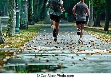 futás, egészséges, nap, él, mind, élet, barátok, -e